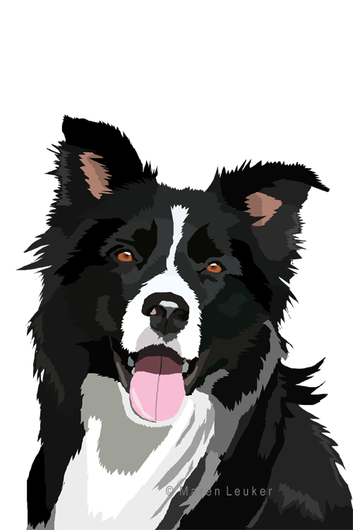 picture freeuse download border collie by Maaira on DeviantArt