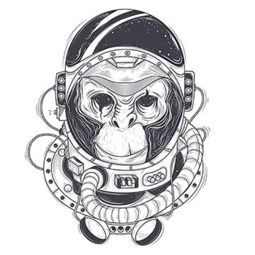 vector black and white stock Free download monkeys . Vector monkey.