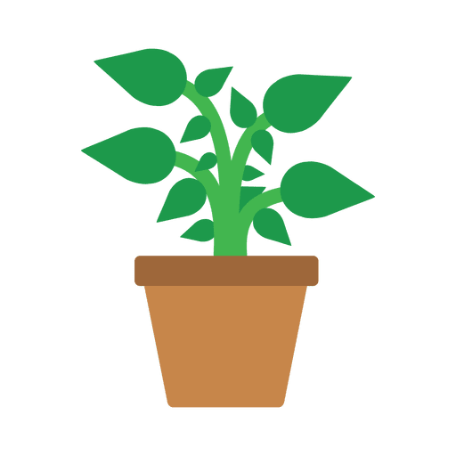 image transparent library Flat flower tub transparent. Vector plant