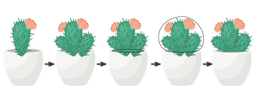 graphic black and white How to Create a Trio of Succulents in Adobe Illustrator
