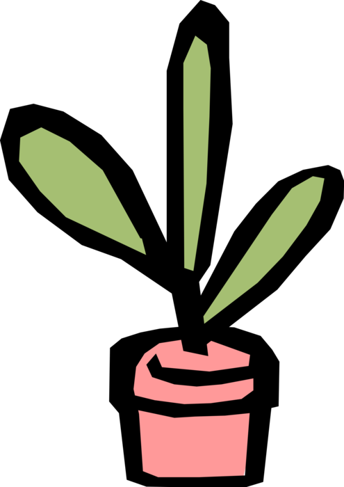 image freeuse stock Potted Plant
