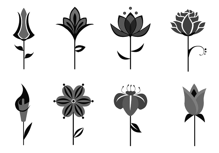 graphic Abstract Plants Png