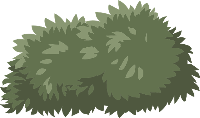 clipart royalty free stock Free image on pixabay. Vector bushes illustrator