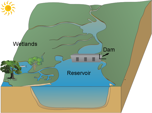 banner download Antoniod usaus h o. Vector river stream