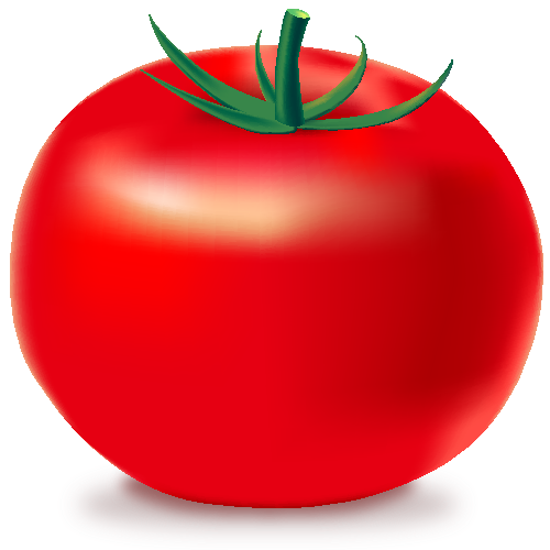 svg freeuse stock Red icon vegetable svg. Vector tomato