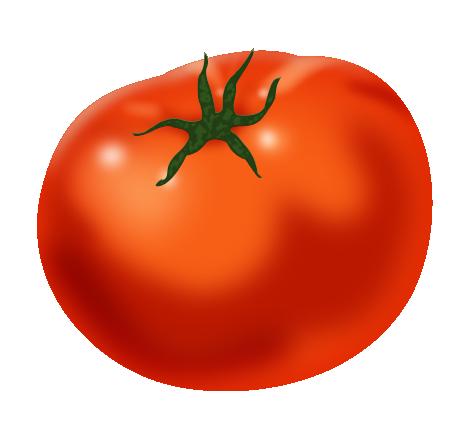 jpg freeuse download Vector tomato. Render on behance
