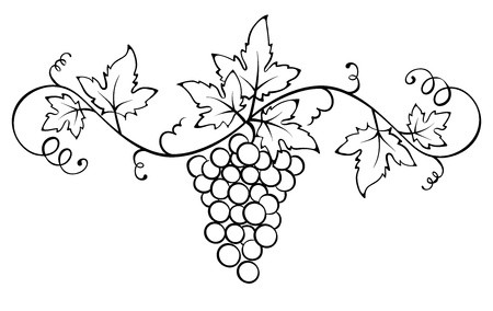 clip royalty free download Vector vine ornament. With the royalty free.