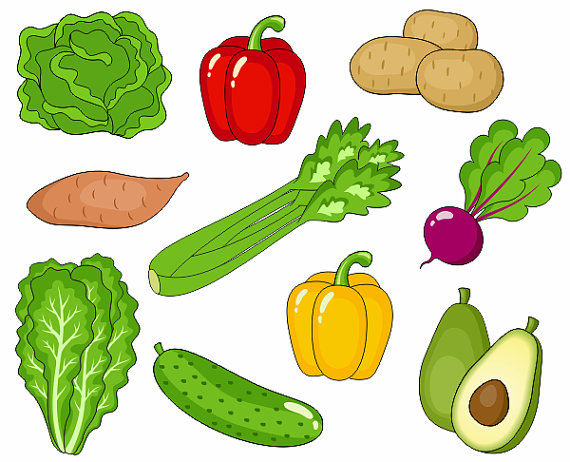 image freeuse stock Vegetable clipart. Clip art for kids