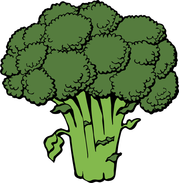 png library Vegetable clipart. Free broccoli clip art