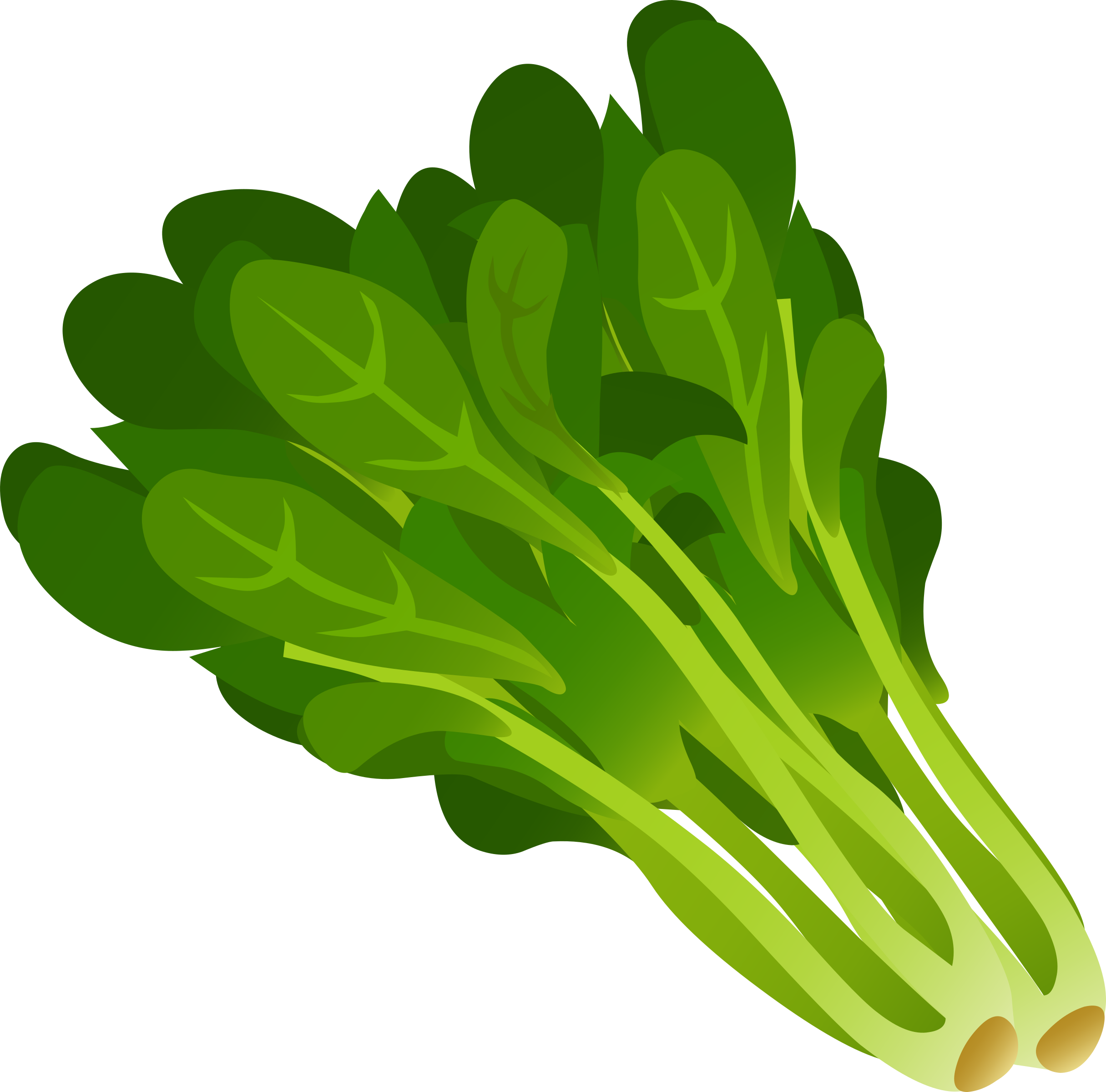 free Vegetables kangkong free on. Lettuce clipart vintage.