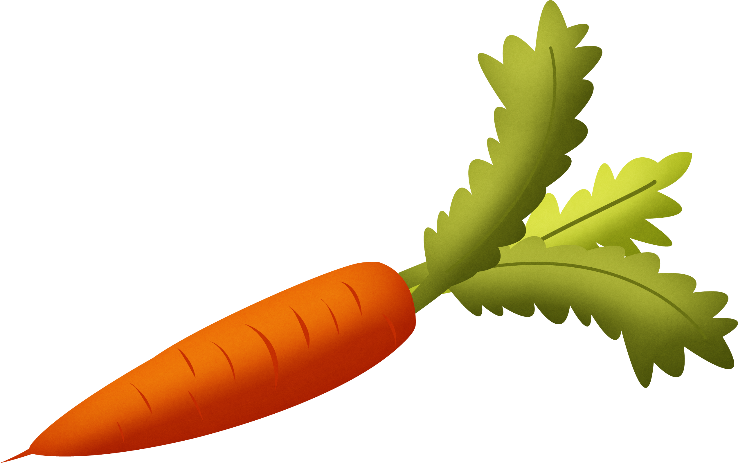 vector royalty free Vegetables clipart at getdrawings. Vector carrot transparent