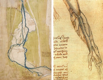 picture free download Da vinci and the. Veins drawing river