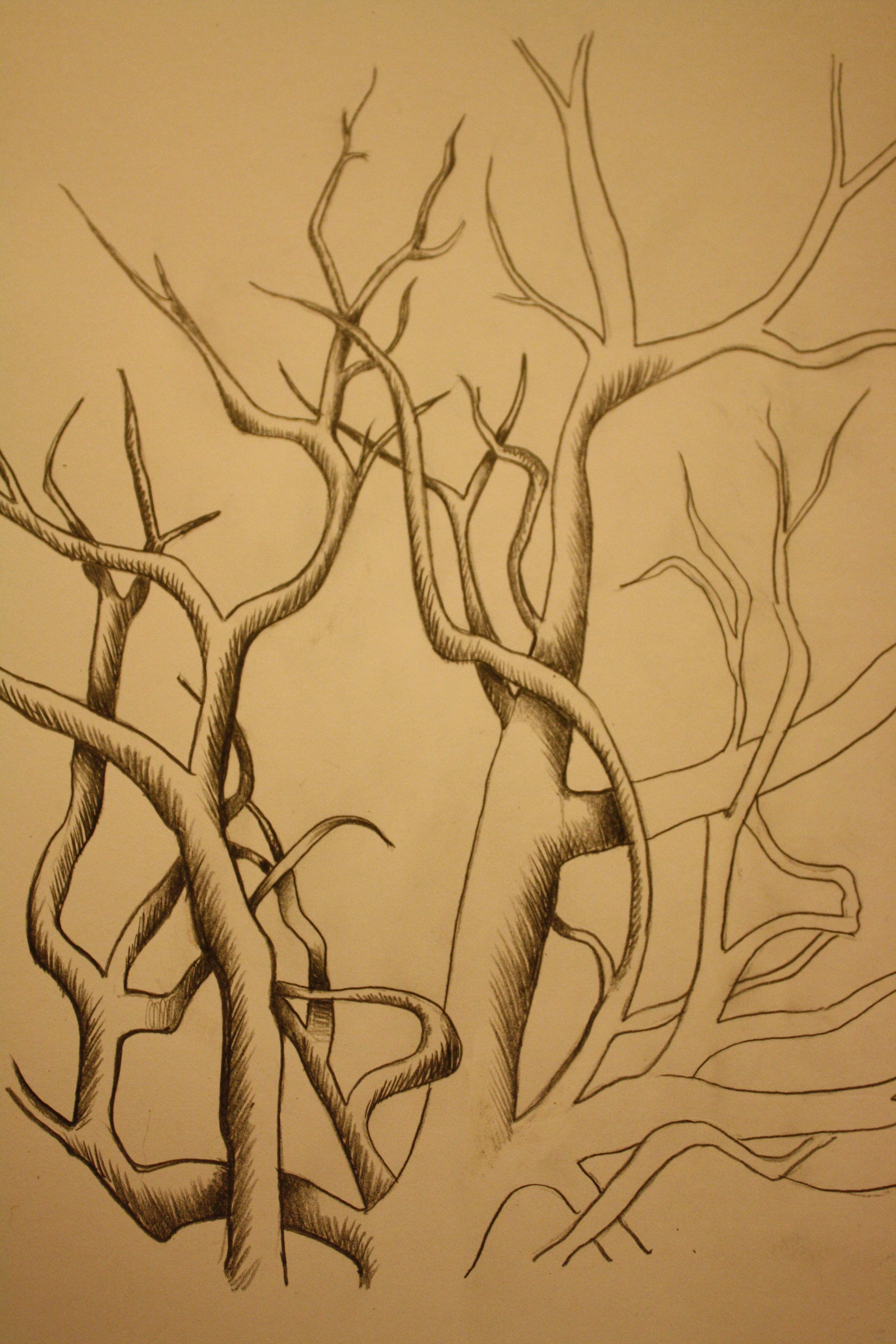 free Day of days everydaydrawings. Veins drawing tree