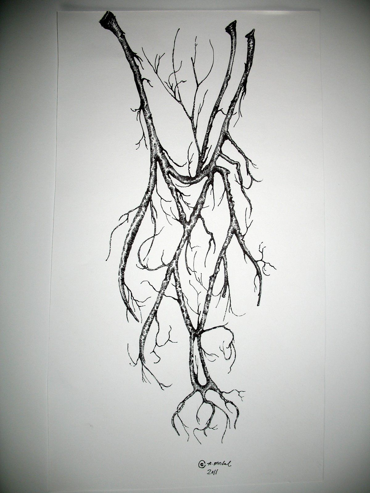 image transparent library Tattoos tattoo designs sketches. Veins drawing tree