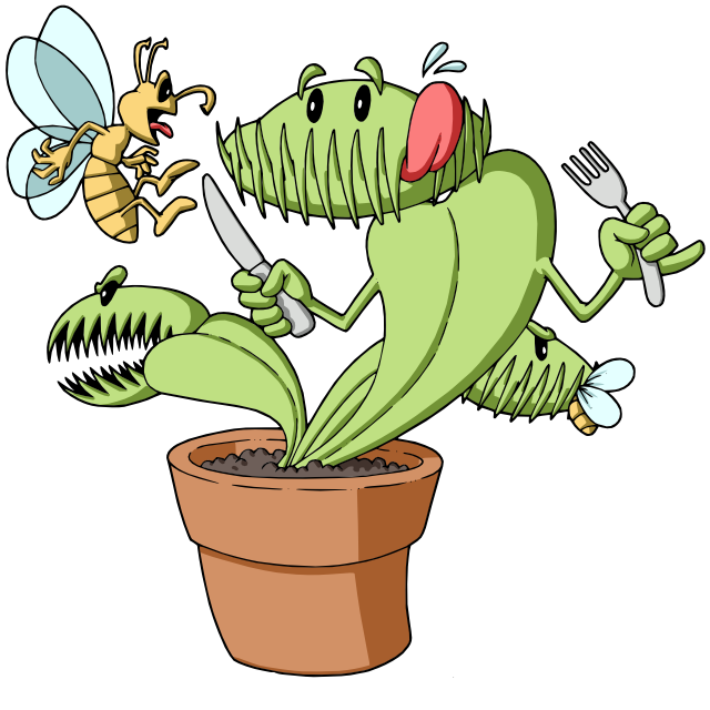 jpg library download Venus fly trap clipart. Carolina red traps gold