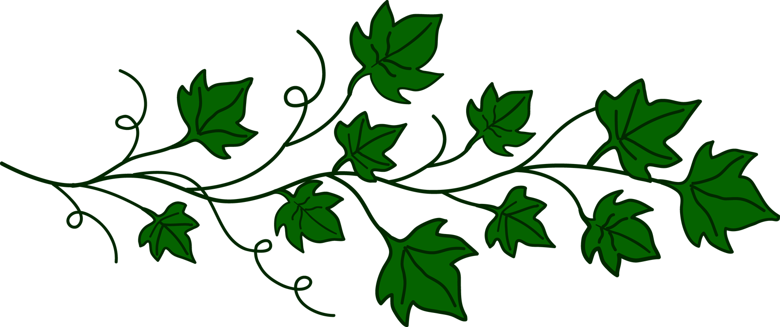 png freeuse library Vine clipart. Vines transparent png pictures