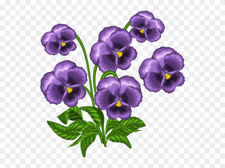 picture black and white download Violet clipart. African violets png download