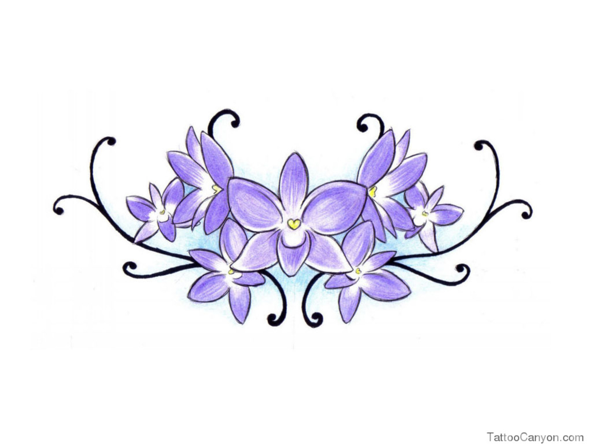 banner free stock Violet clipart drawing. Flowers for clip art