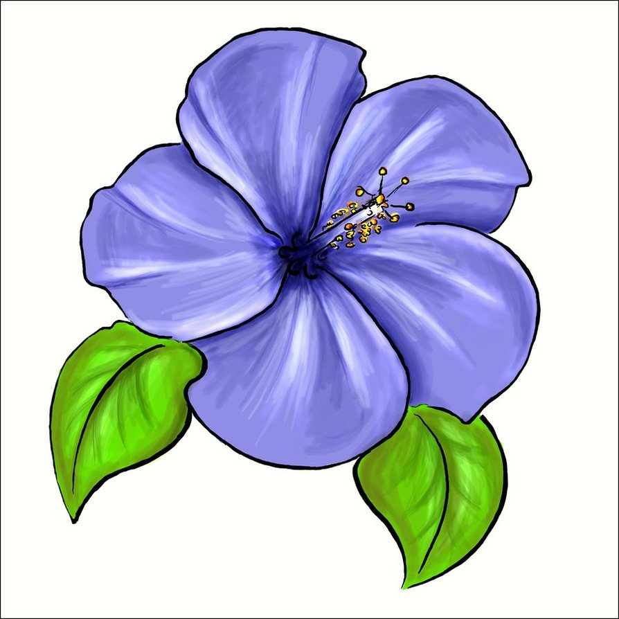 banner transparent library Violet clipart drawing. Free flower cliparts download