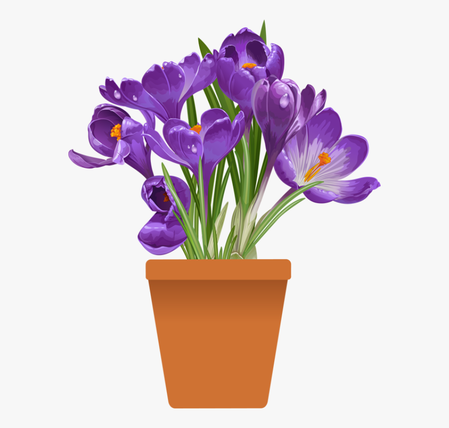 image free stock Spring flowering purple in. Violet clipart flower plant