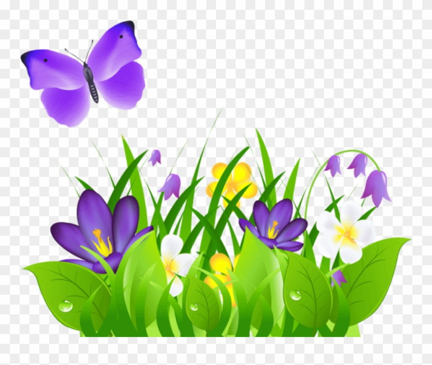 jpg library stock Violet clipart flower plant. Clip art flowering purple
