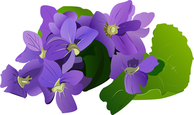 picture transparent download Violet clipart flower plant. Pontiac s rebellion an