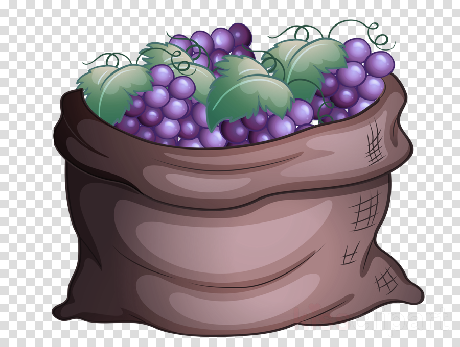 image library download Violet clipart purple food. Grape plant fruit