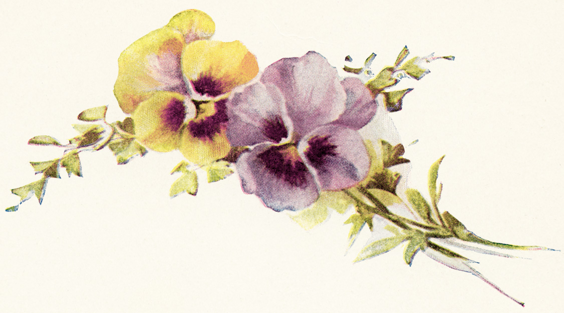 png library download Violet clipart vintage. Free purple cliparts download