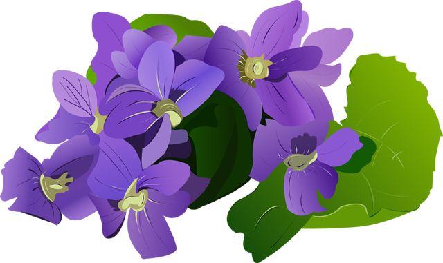 png royalty free download Free cliparts download clip. Violet clipart violet flower.