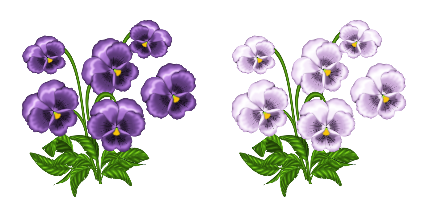 clipart black and white Violet clipart violet flower. Purple and white violets.
