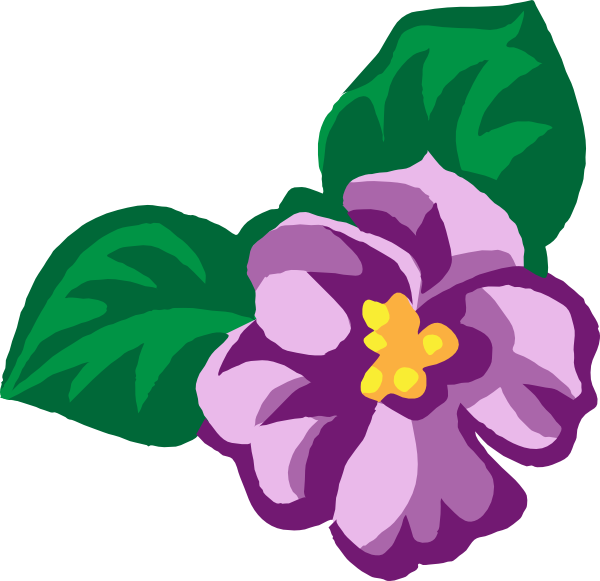 graphic royalty free download African violet clip art. Violets drawing