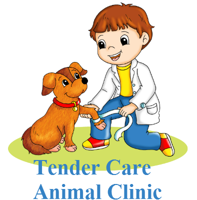 clip art transparent library Walking on sidewalk clipart. Tender care animal clinic