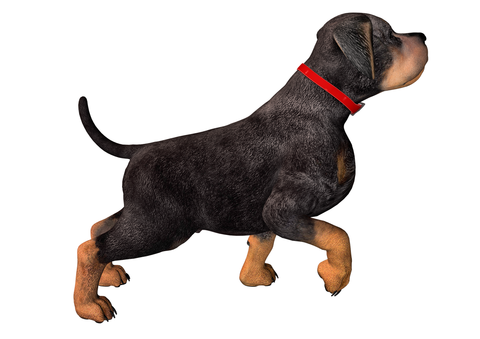 image freeuse stock Png hd transparent images. Walking the dog clipart