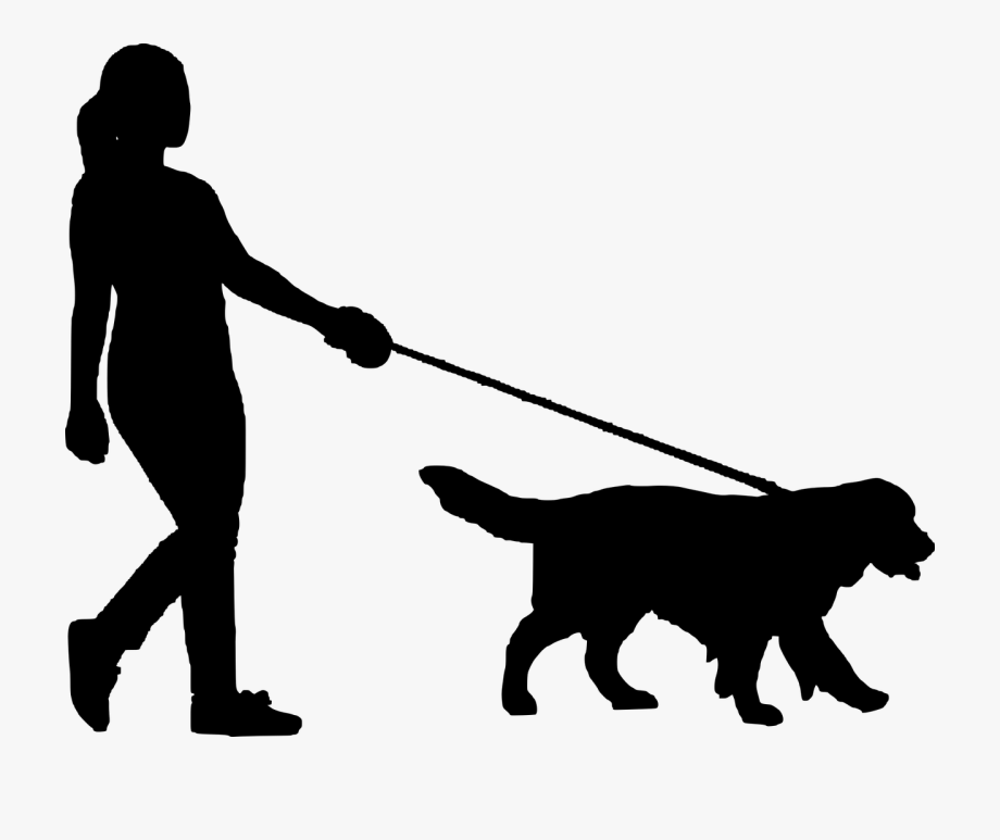 transparent download Free stock image result. Walking the dog clipart.
