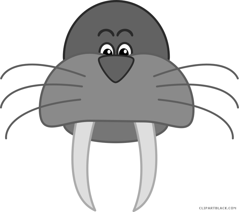 banner library Clipartblack com animal free. Walrus clipart