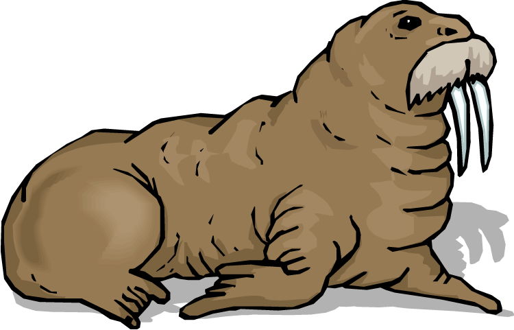 clipart library stock Panda free images info. Walrus clipart