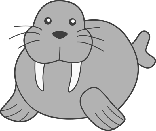png black and white Walrus cliparts