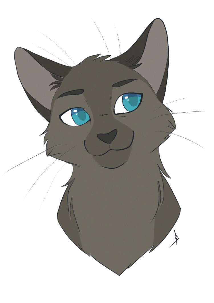 image transparent stock Drawing random cat. Commission jaggedstripe by owlcoat