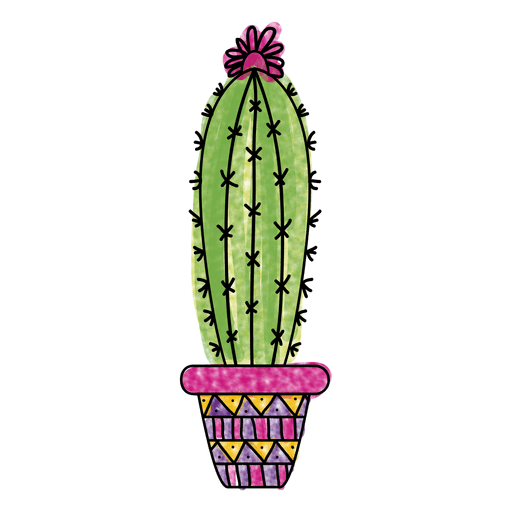 library Watercolor pot ornamented silhouette. Transparent vector cactus