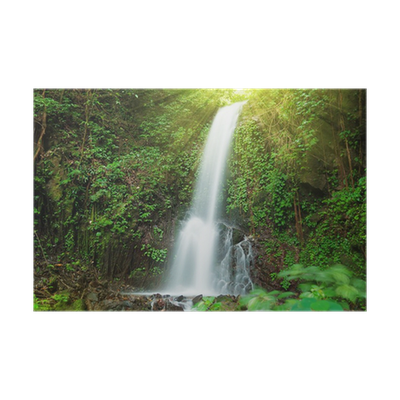 banner transparent stock Small waterfall in jungle Poster