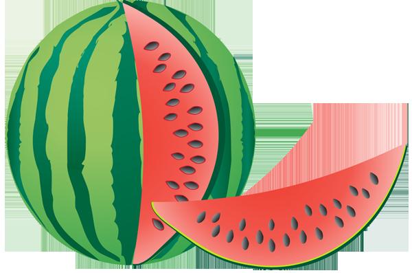 image transparent stock Panda free images info. Watermelon clipart muskmelon