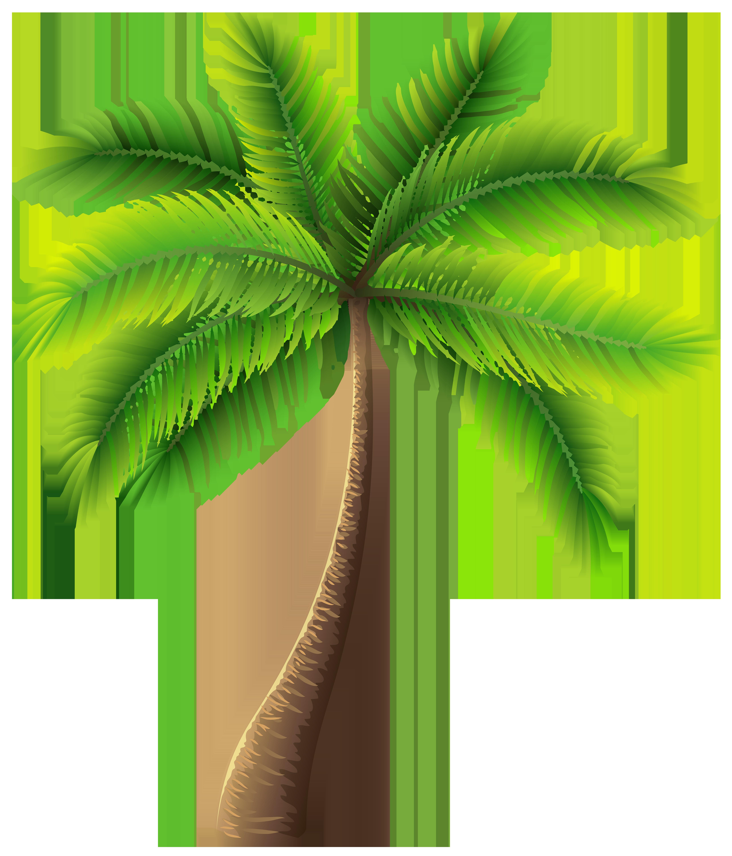clip black and white Palm clipart. Tree clip art web.