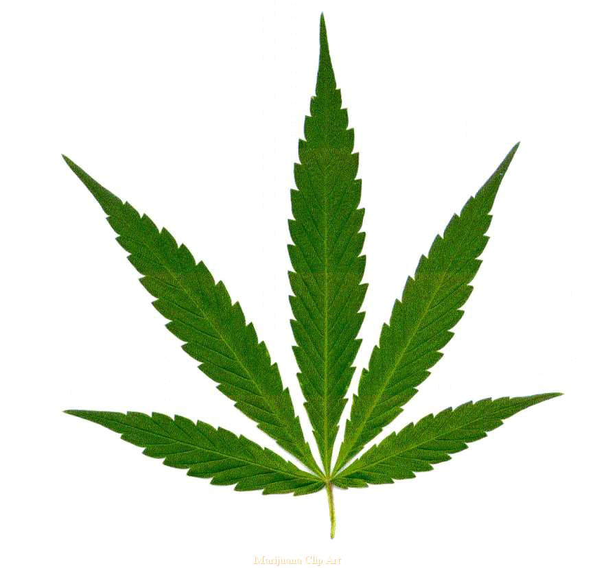 clipart royalty free Weed clipart. Free cliparts download clip