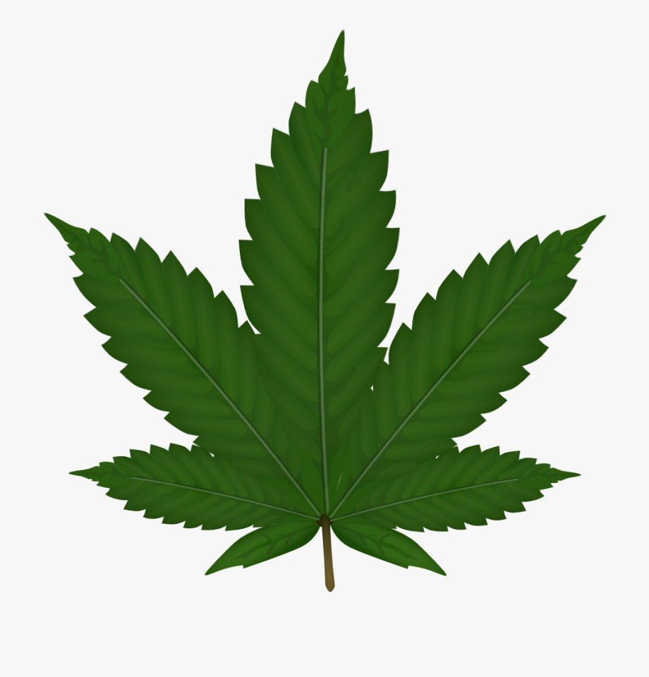 clipart royalty free stock Weed clipart. Transparent cartoon free cliparts