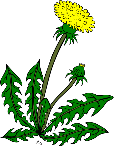 banner free library Free cliparts download clip. Weeds clipart
