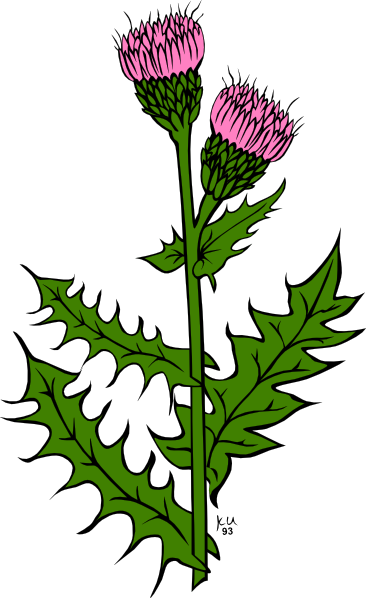 clipart download Cartoon . Weeds clipart