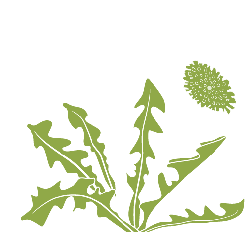 svg free library Weeds clipart. Home medicinal join the