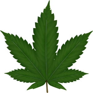 picture transparent download Weeds clipart. Weed clip art at