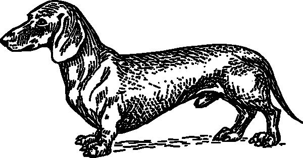image transparent download Dachshund Dog Clip Art at Clker