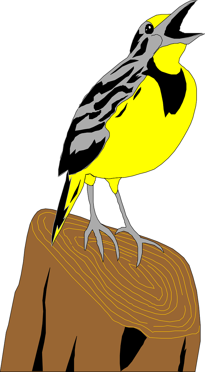 picture stock Western meadowlark clipart. World cartoon bird yellow